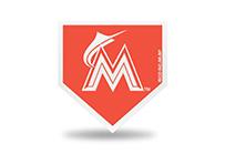 MBM6501